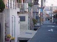 左手-兵庫県伊丹市整体カイロプラクティック院