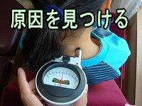 ナーボ検査-兵庫県伊丹市整体カイロプラクティック